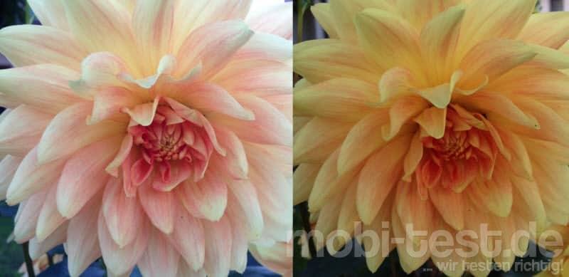 iPhone 5C Testfoto Vergleich