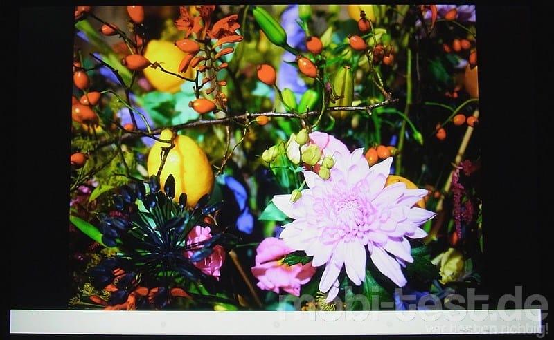 LG G Pad 8.3 Display (13)