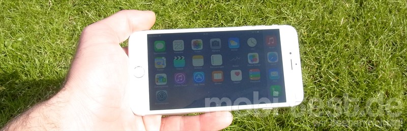 iPhone 6 Plus Display (5)