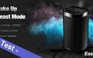 Im Test - der EasyAcc Dolcer DP300 Bluetooth Lautsprecher